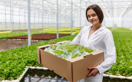 Un seguro de Responsabilidad Civil creado especialmente para agricultores