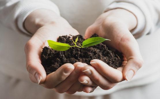 Cuida de ti y de tu planeta con el Seguro de Responsabilidad Medioambiental de Segusan